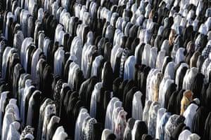 Eid begins: Female Muslim worshippers perform Eid al-Fitr prayers