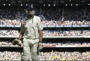 Cricket: Cricket