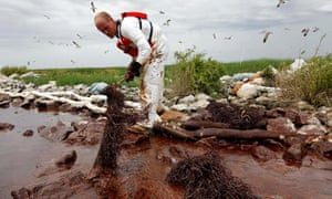 The clean-up operation on the coast of Louisiana at the height of the spill