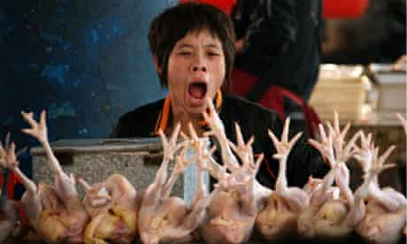A Chinese poultry seller waits for customers at her stall in a market in Huaibei, east China