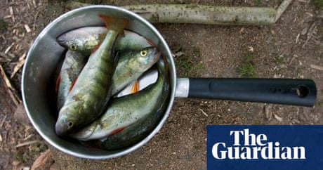 The Freshwater Fish Fight Fish The Guardian