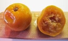 Poached Seville oranges