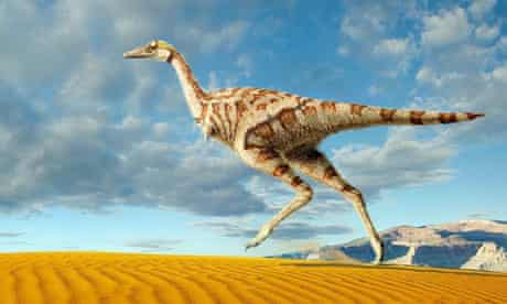 Linhenykus monodactylus, the one-fingered dinosaur, which has been discovered in China