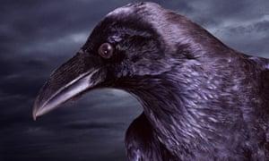 ravenhead-night-sky