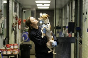 From the agencies: Animals At The Heathrow Animals Reception Centre