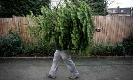Taking Christmas tree out
