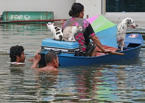 Flooding in Thailand: A woman and her pets are transported on a boat