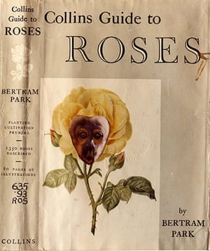 Joe Orton exhibition: Collins Guide to Roses by Bertram Park