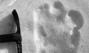 A claimed yeti footprint from 1951