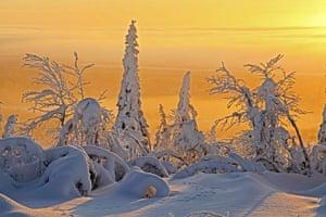 Frozen Planet: Frozen Planet