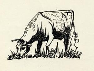 Sylvia Plath sketches: Cow