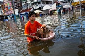 Thailand floods : Flooding Ravages Provinces Threatening Bangkok