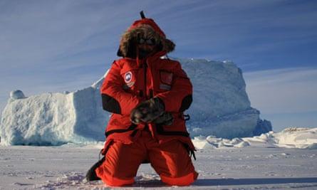 author sea ice
