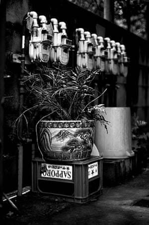 Tokyo by Paul Church: Plant pot