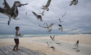 24 Hours: Playa del Carmen, Mexico: A boy feeds seagulls on a beach
