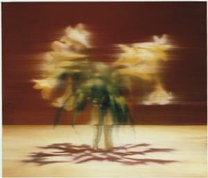 Gerhard Richter: Panorama: Lilies 2000 by Gerhard Richter