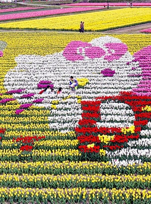 Hello Kitty: A large Hello Kitty is sculpted out of flowers at the annual tulip festival