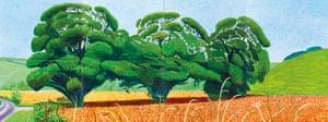David Hockney book: Three Trees Near Thixendale, Summer 2007