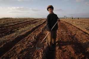 Famine in North Korea:  area damaged by summer floods and typhoons in South Hwanghae province