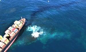 New Zealand oil spill: The Liberian cargo ship, MV Rena