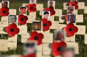 Armistice day: Field of Remembrance in Princess Street Gardens Edinburgh