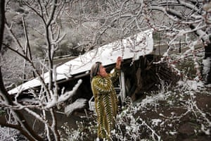 After the thaw: Armenia: Irifat Babyan looks in dismay at her apricot trees covered in snow