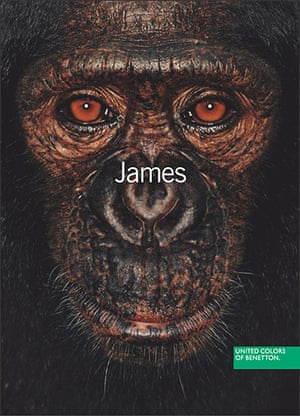 Benetton adverts: James and other apes: 2004