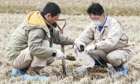 Fukushima prefecture rice is tested