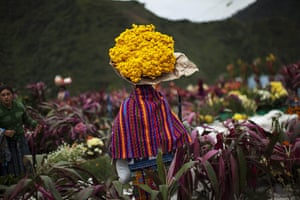 All saints day: A woman walks through cemetery carrying a bundle of flowers, Guatemala