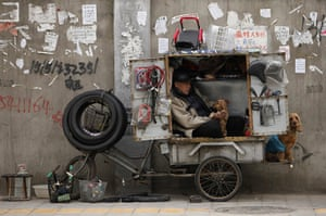 24 hours in pictures: A bicycle repairer strokes his dog inside a storage box in Beijing