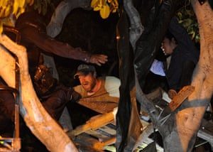 Occupy LA evictions: Occupy Los Angeles protesters are arrested from a tree house
