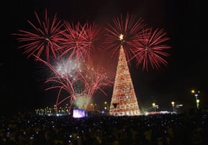 Christmas Trees: Christmas trees from around the world