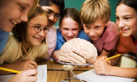 School pupils studying the human brain School pupils studying the human brain.
