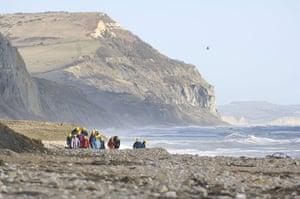 virtual Christmas gift: seashore foraging