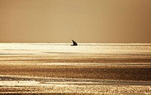 Mozambique dhow trip: dhow, Arimba beach