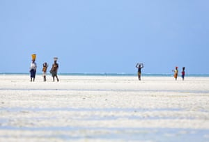 Mozambique dhow trip: Arimba villagers seafood foraging