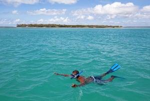 Mozambique dhow trip: Snorkeling, Mogondula Island
