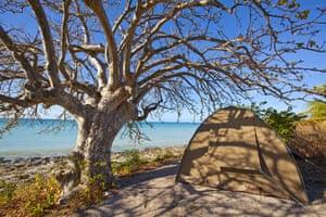 Mozambique dhow trip: Camping, Mogundula Island