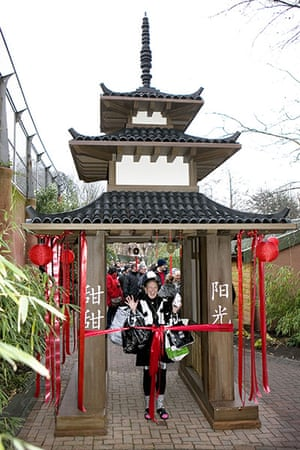 pandas in edinburgh: Members of the public enter through a Chinese style pagoda