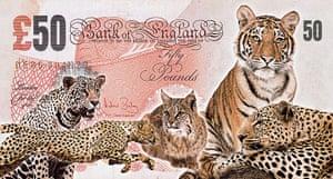 Banknote Designs: Banknote Design by John Gray