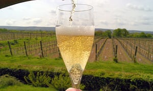 English champagne from grapes grown on the South Downs in East Sussex