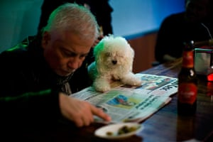 24 hours in pictures: A man reads a newspaper with his dog in a bar in Barcelona, Spain