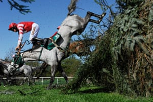 Tom's best of the year: Aintree racing