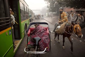 24 hours in pictures: New Delhi, India: A labourer rides his mule