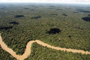 Yasuni National Park: Yasuni National Park in Ecuador