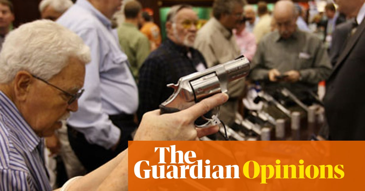 Gun ownership in the US: what the data can tell us | Harry J