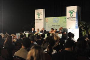 COP17 in Durban: BASIC countries