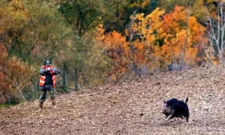 A hunter near Siena, Tuscany 16/11/2003