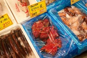 Shark fishing: shark hearts for sale at Kesennuma