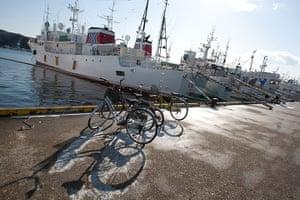 Shark fishing: longline fishing boats in Kesennuma